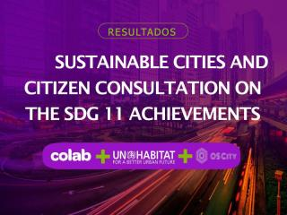 Sustainable Cities and Citizen Consultation on the SDG11 Achievements - Colab - 2019