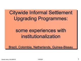 Citywide Informal Settlement Upgrading Programmes: some experiences with institutionalization - 2013