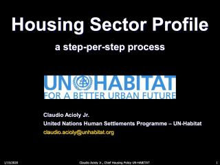 Housing Sector Profile - a step-per-step process - short version - 2012