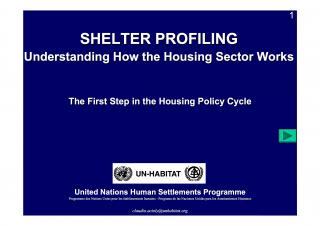 Shelter Profiling - Understanding How the Housing Sector Works - The First Step in the Housing Policy Cycle - 2008